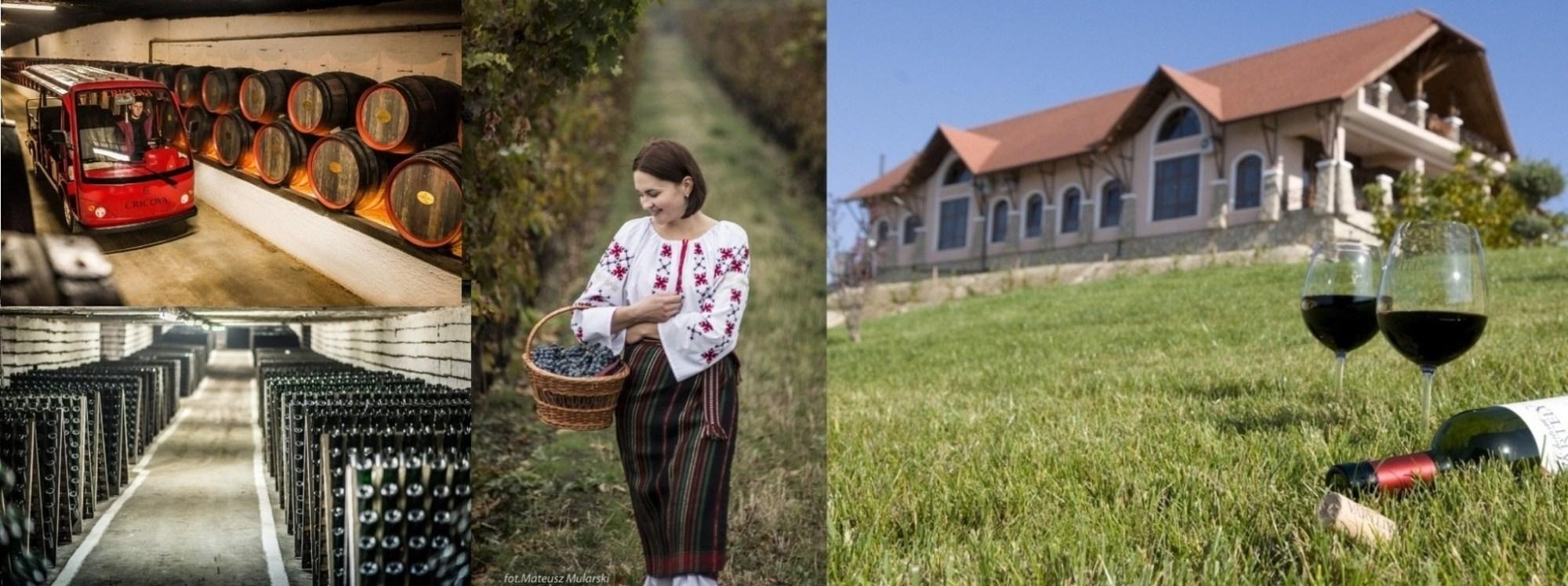 Bortúra Moldovába